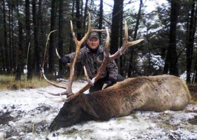 Rifle Elk Hunt