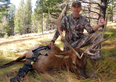Archery Elk Hunt