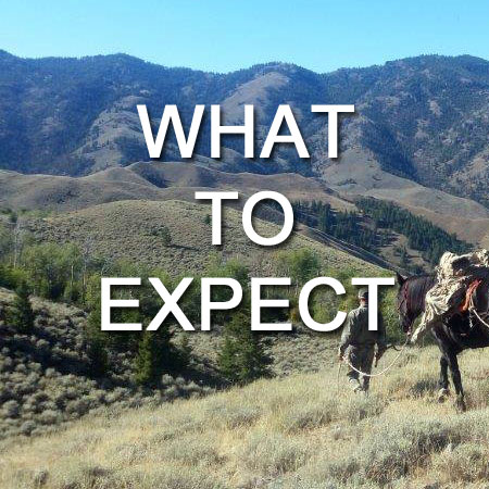 Idaho Specialty Hunts